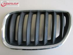 Radiator Grille Frame BMW X5 (E53) used